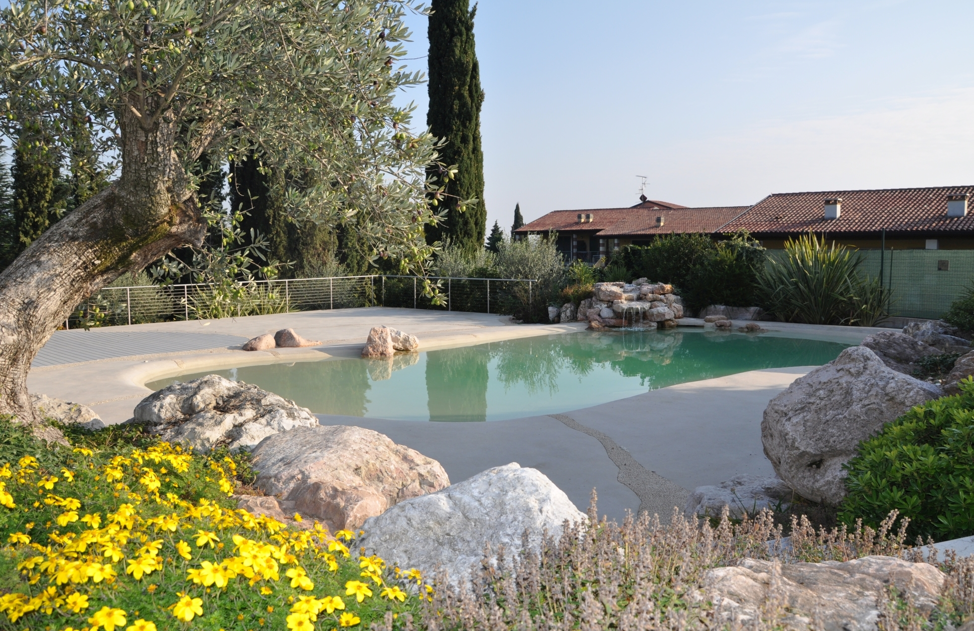 Natural Pools Design and construction of pools